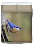 Nuthatch -- Duvet Cover