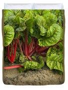 Organic Swiss Chard Duvet Cover