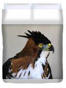 Ornate Hawk-eagle Duvet Cover