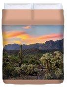 Pastel Desert Skies  Duvet Cover