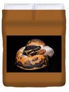 Piedbald Ball Python Duvet Cover