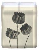 Plant Studies, 1928, Nature Series, By Karl Blossfeldt  Duvet Cover