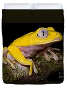 Red-eyed Treefrog, Xanthic Form Duvet Cover