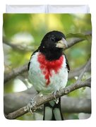 Rose-breasted Grosbeak Duvet Cover