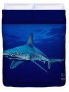 Sandbar Shark Duvet Cover