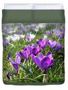 Spring Crocuses Duvet Cover