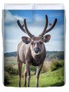Sri Lankan Sambar Deer Male Duvet Cover