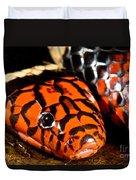 Surinam Coralsnake Duvet Cover