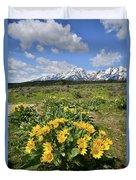 Teton Balsam Root Duvet Cover