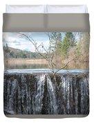 Vermont Swamp Duvet Cover
