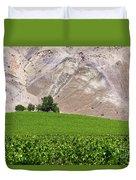 Vines Contrasting With Chiles Atacama Desert Duvet Cover