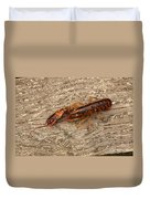 Young Lobster Duvet Cover