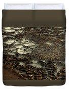 2008 5 17b Duvet Cover