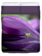 2010 Wisteria Blossom Up Close 20 Duvet Cover