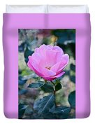 2015 After The Frost At The Garden Pink  Rose Duvet Cover