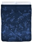 2017 Pi Day Star Chart Carree Projection Duvet Cover