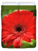 Red Gerber Duvet Cover