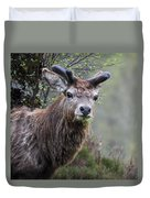 Red Deer Stag Duvet Cover