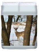 Whitetail Buck Duvet Cover