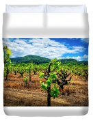 2638- Coffaro Vineyard Duvet Cover