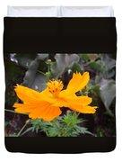 Australia - Yellow Cosmos Carpet Flower Duvet Cover