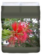 Australia - Red Flower Of The Callistemon Duvet Cover