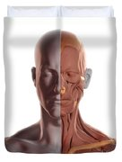 Facial Muscles Duvet Cover