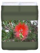 Australia - Callistemon Red Flower Duvet Cover
