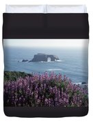 2a6101 Arched Rock And Blue Pod Lupine Ca Duvet Cover