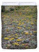 2d07512 Prairie Zinnia In Lost River Range Duvet Cover