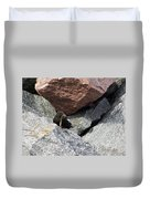 Black Guillemot Duvet Cover