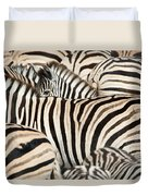 Burchells Zebras Equus Quagga Duvet Cover