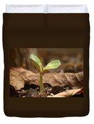 Coffee Seedling Duvet Cover