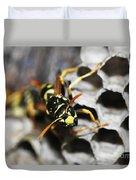 Common Wasp Vespula Vulgaris Duvet Cover