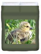 Cute Baby Goose Duvet Cover