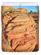 Early Morning In Valley Of Fire Duvet Cover