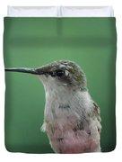Female Ruby-throated Hummingbird Duvet Cover
