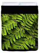 Fern Close-up Of Water Droplets  Duvet Cover