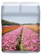 field of cultivated Buttercup  Duvet Cover