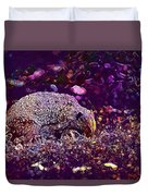 Hedgehog Animal Spur Nature Garden  Duvet Cover