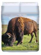 Kansas Buffalo Duvet Cover