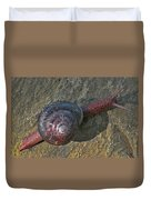 Oregon Snail Duvet Cover