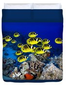 Racoon Butterflyfish Duvet Cover