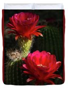 Red Torch Cactus  Duvet Cover