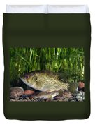 Rock Bass Duvet Cover