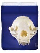 Skull Of A River Otter Duvet Cover