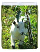 Young Goat On A Farm Duvet Cover