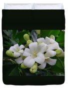 Australia - Gardenia White Flowers Duvet Cover