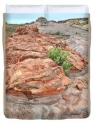 Colorful Sandstone In Valley Of Fire Duvet Cover