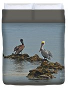 37-  Pelicans Duvet Cover